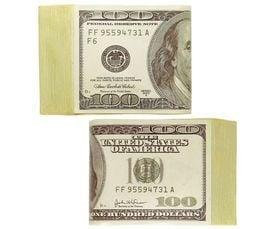 Nep geld
