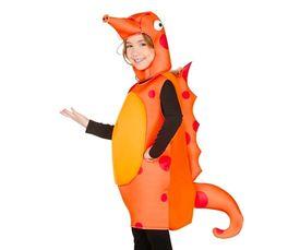 Zeepaardje kostuum