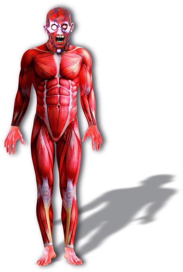 Anatomie man kostuum rood