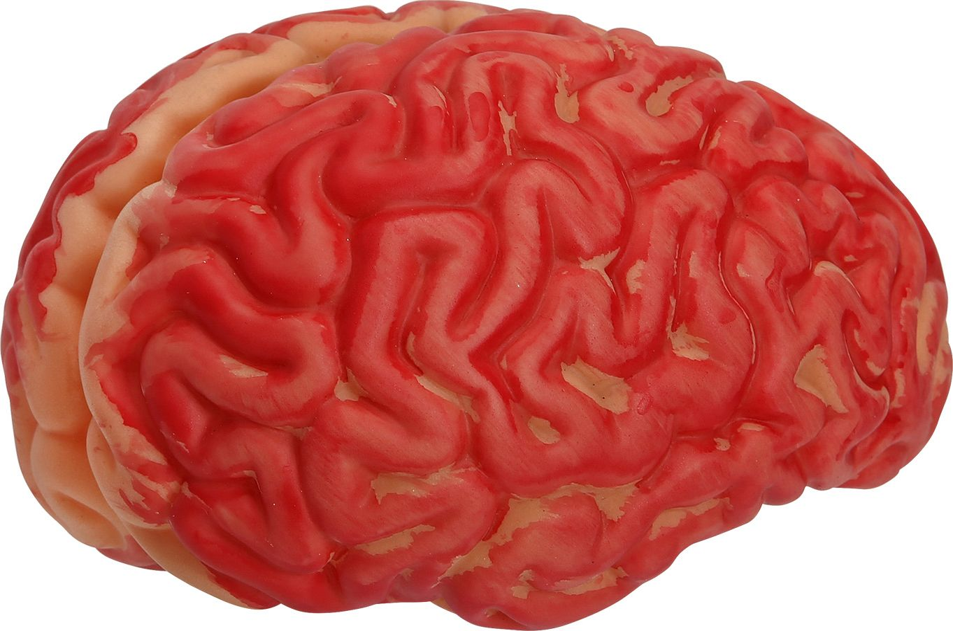 Brein mens halloween rood