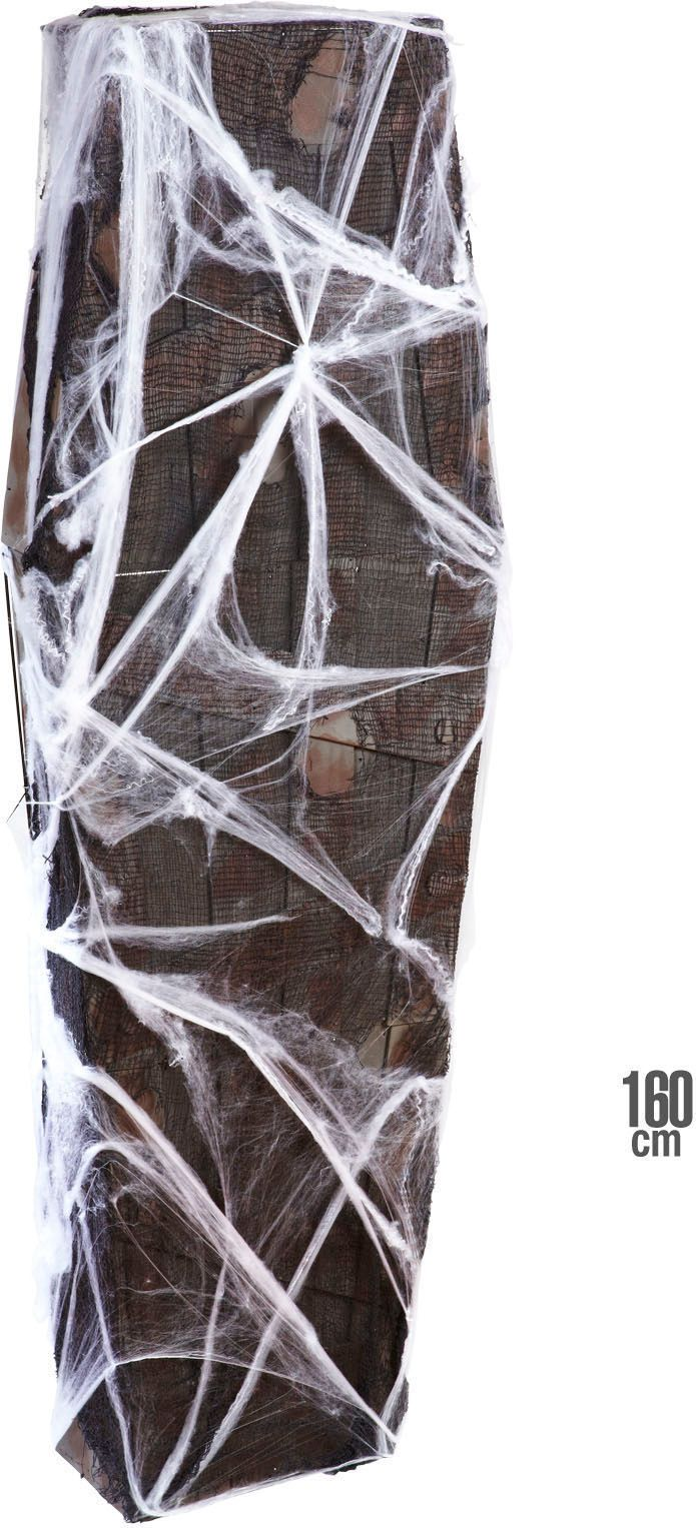 Doodskist met net en spinnenweb