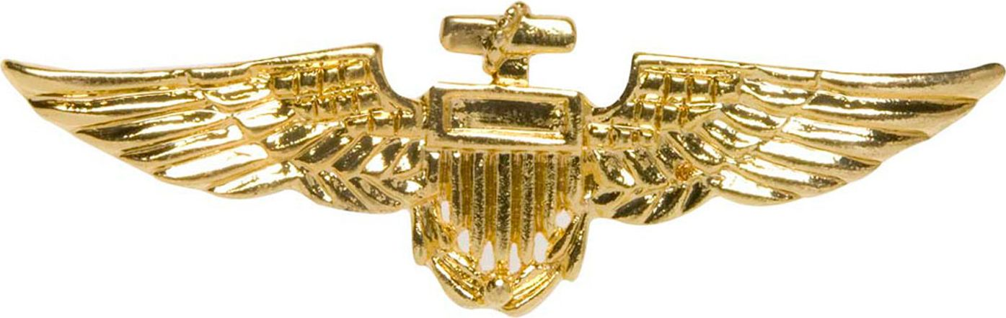 Gouden piloten broche