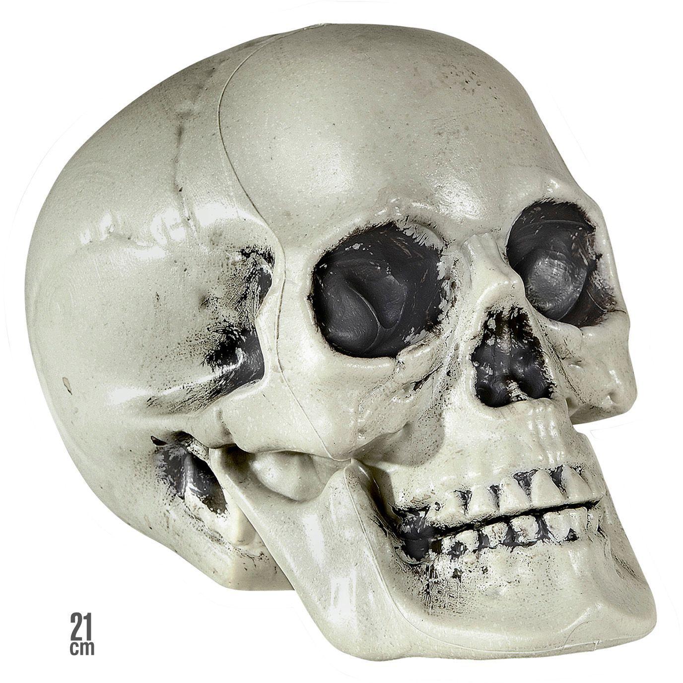 Halloween schedel
