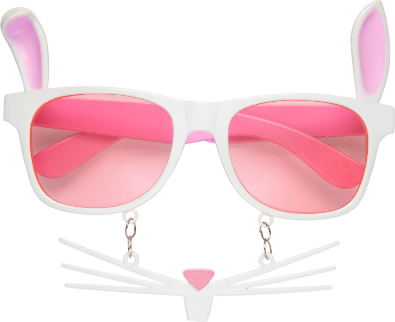Konijnen bril met snorharen