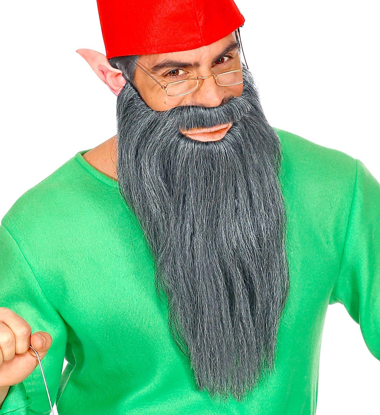 Lange grijze baard met snor
