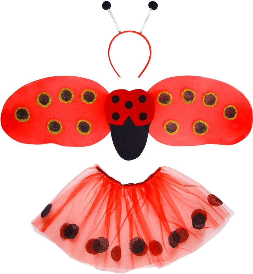 Lieveheersbeestje accessoires set kind