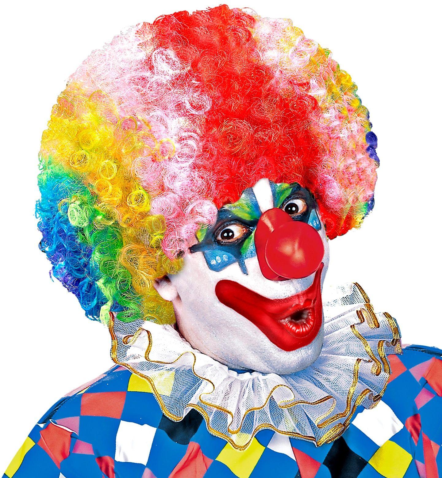 Meerkleurige clowns pruik met krullen