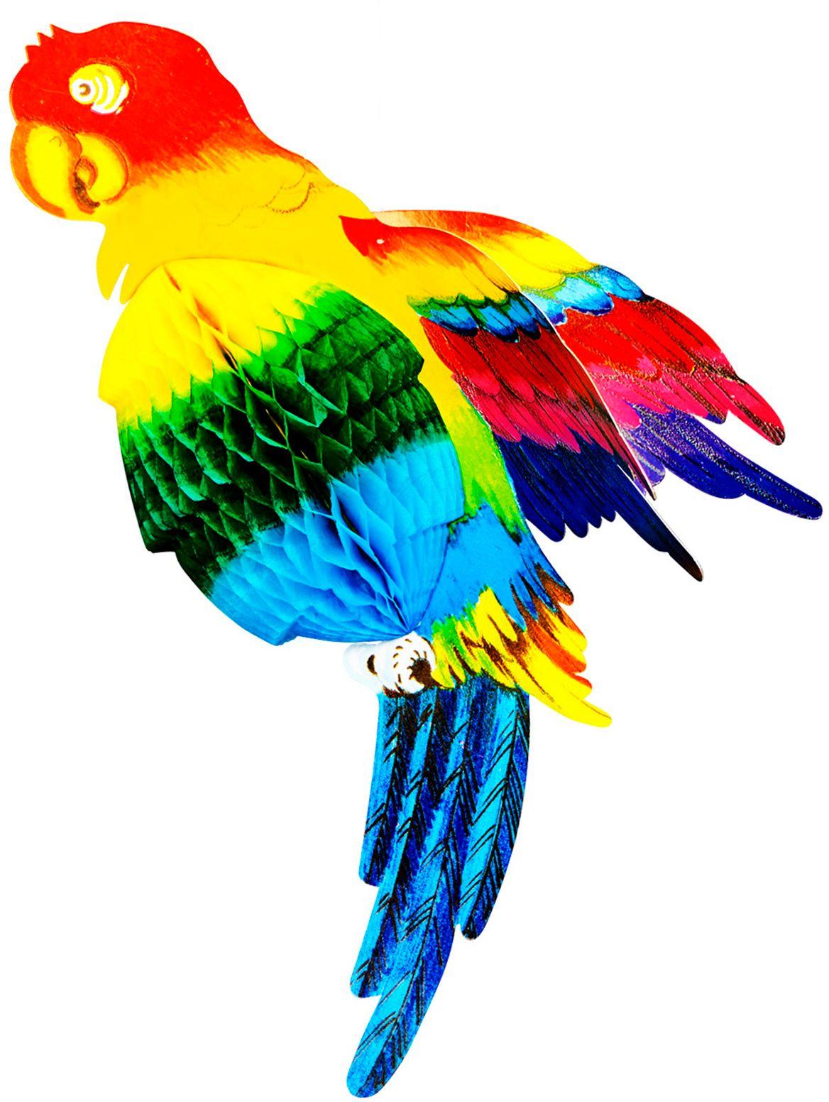 Meerkleurige papegaai honingraat