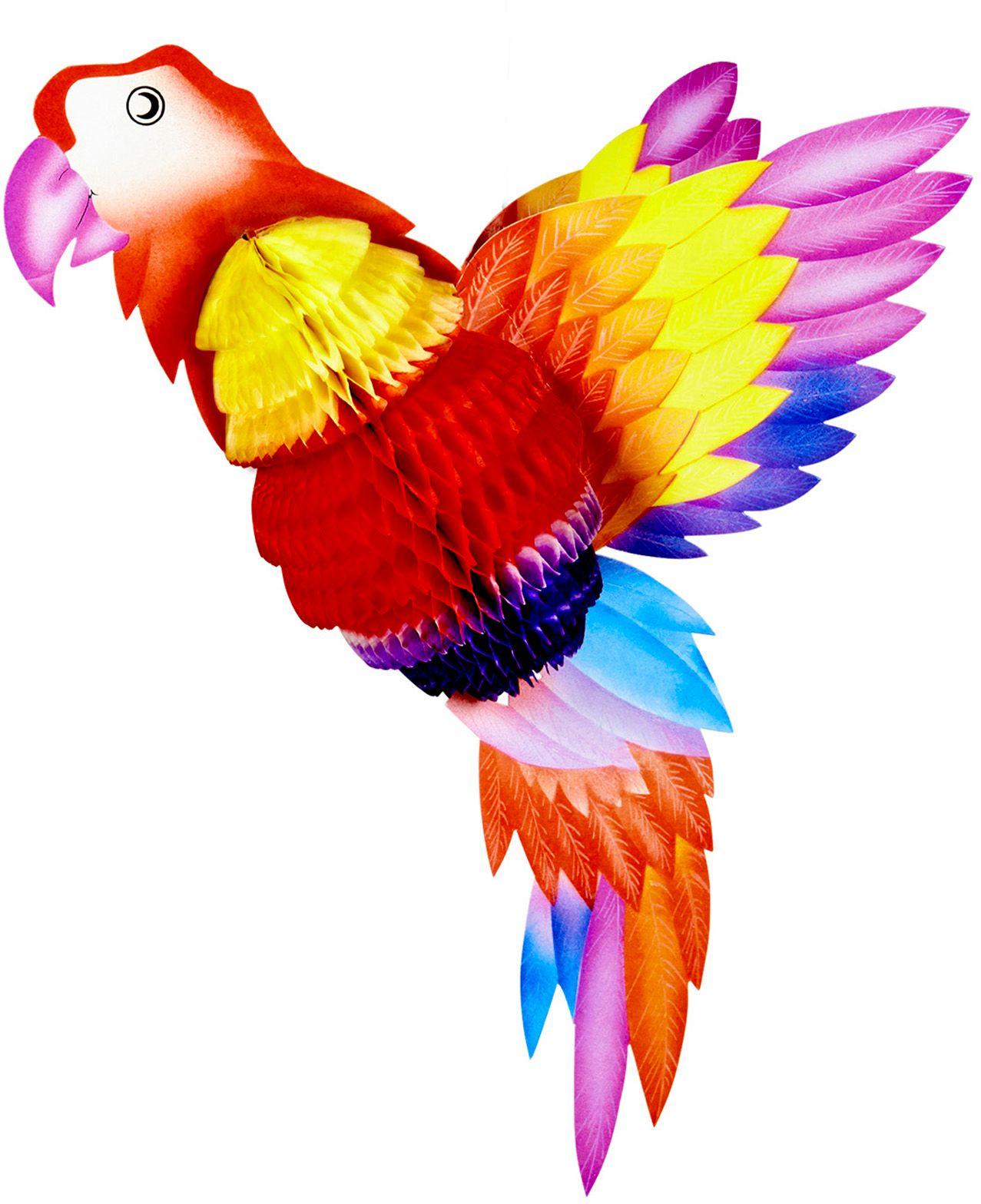 Rode papegaai honingraat