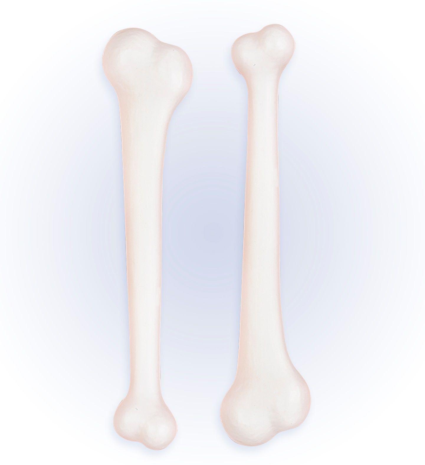 Set van 2 botten