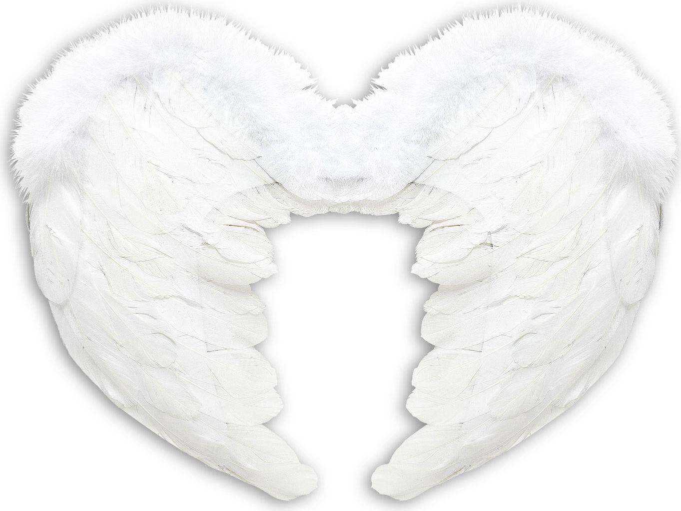 Veren engel vleugels wit