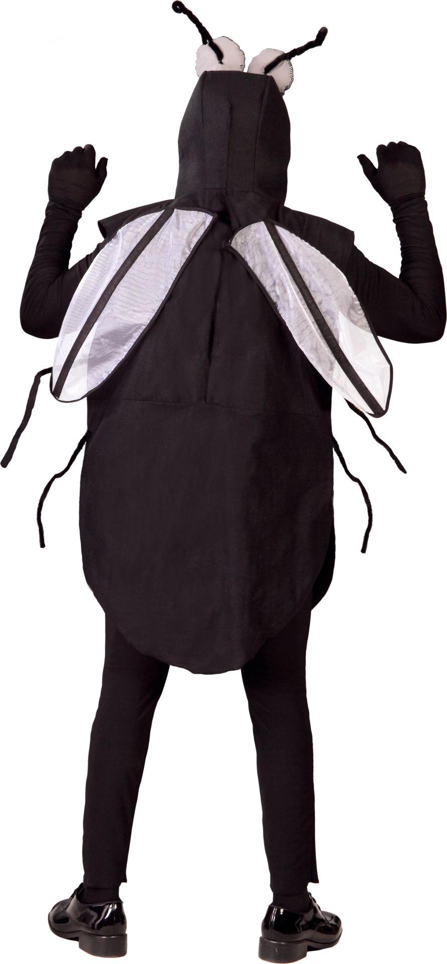 Vlieg kostuum heren