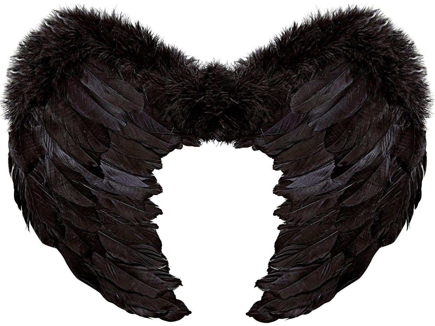 Zwarte veren vleugels